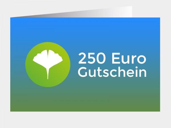 Gutschein 250 Euro (als PDF via E-Mail)